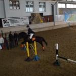 Соревнование по конкуру в ИППО (Прибой, кабардинский мерин)