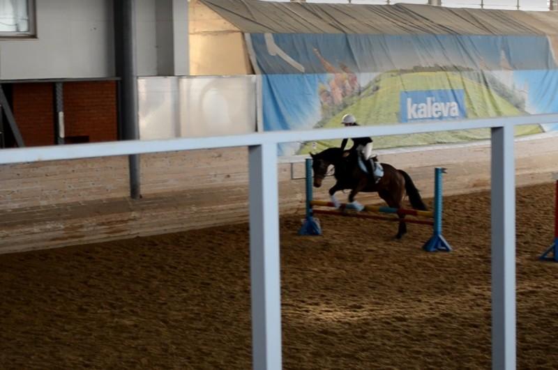 Соревнование по конкуру в КСК ИППО (ШВЕ Династия)