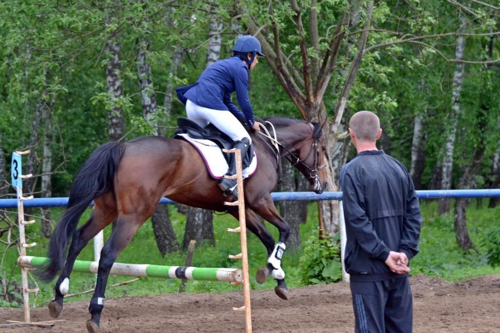 конные школы на широкой речке всей России Коми